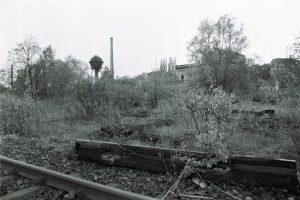Schöneberger Südgelände 1981. Foto: Ulrich Horb